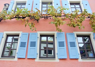 Fassade-Weintrauben